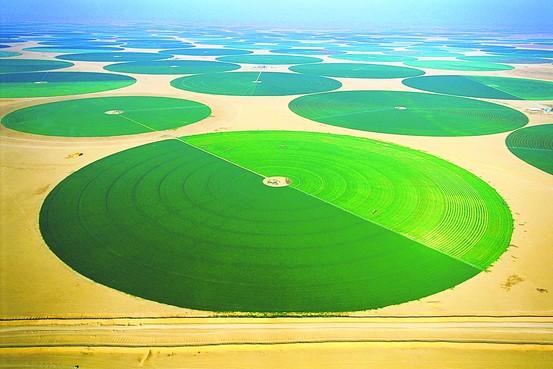 Saudi Arabia irrigation