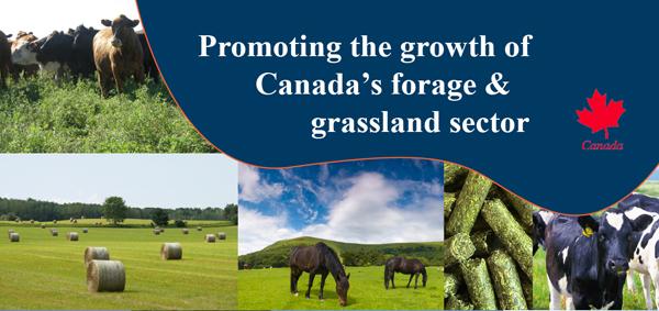 Promoting Canada's forage & grassland