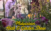 Midwest Herb show