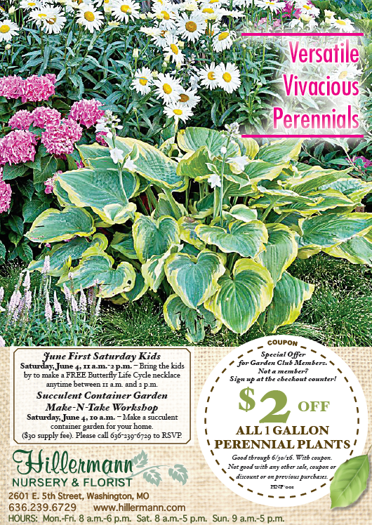 The Hillermann Nursery and Florist Newspaper ad for 6-1-16
