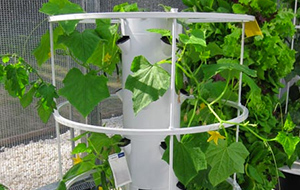 A Tower Garden with plants growing on it