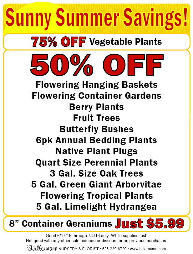 Sunny Summer Savings sale at Hillermann Nursery and Florist! Good 6-17-16 through 7-4-16 only. While supplies last.