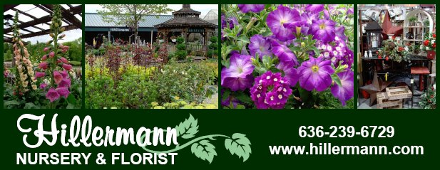Pictures, logo, phone number and website heading graphic - Hillermann Nursery and Florist. www.hillermann.com