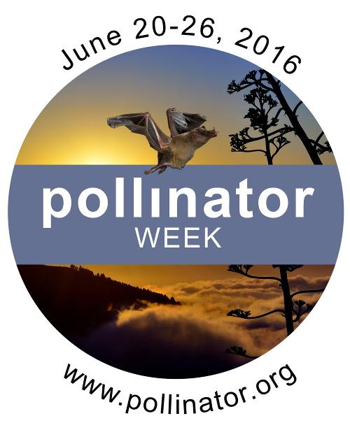 Pollinator Week logo - pollinator.org