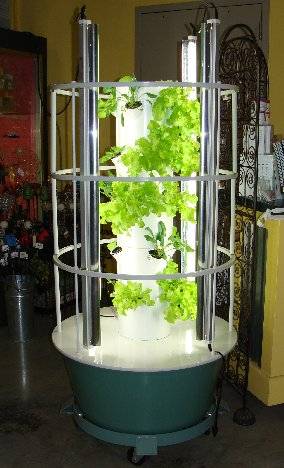 The Tower Garden with veggie plants growing in the greenhouse at Hillermann Nursery and Florist