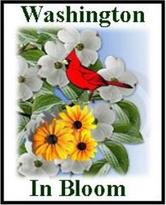 Washington In Bloom logo