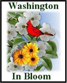 Washington In Bloom logo