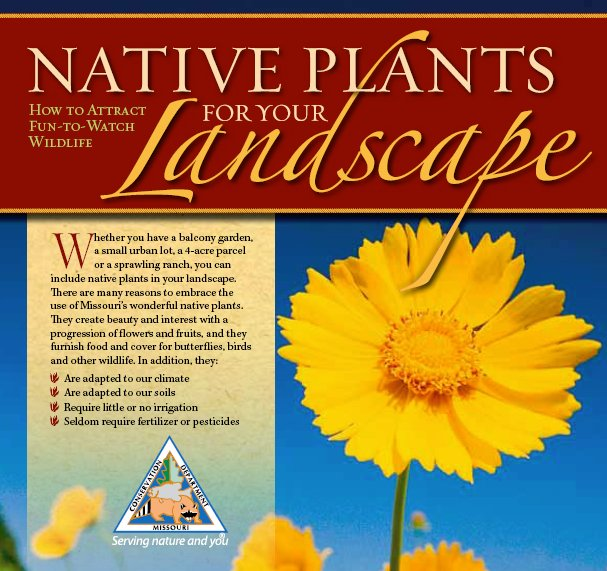 Cover graphic for Native Plants For Your Landscape brochure from Missouri Department of Conservation