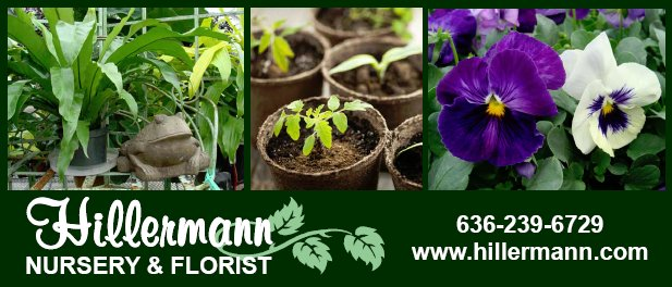 Pictures, logo and store information in a header graphic for Hillermann Nursery and Florist