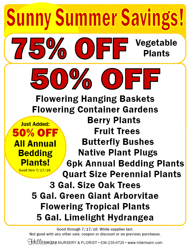 Sunny Summer Savings Sale - good through 7-17-16