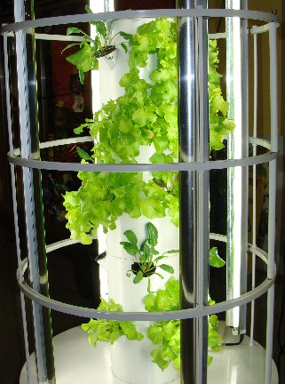 The Tower Garden with fresh veggie plants at Hillermann Nursery and Florist