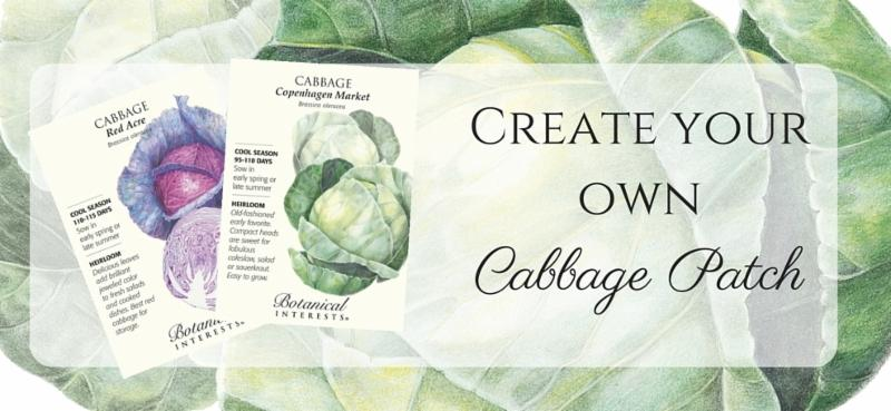 Seed packets and cabbage background pictures with text - Create your own Cabbage Patch