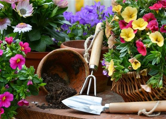 Potting items with flowers