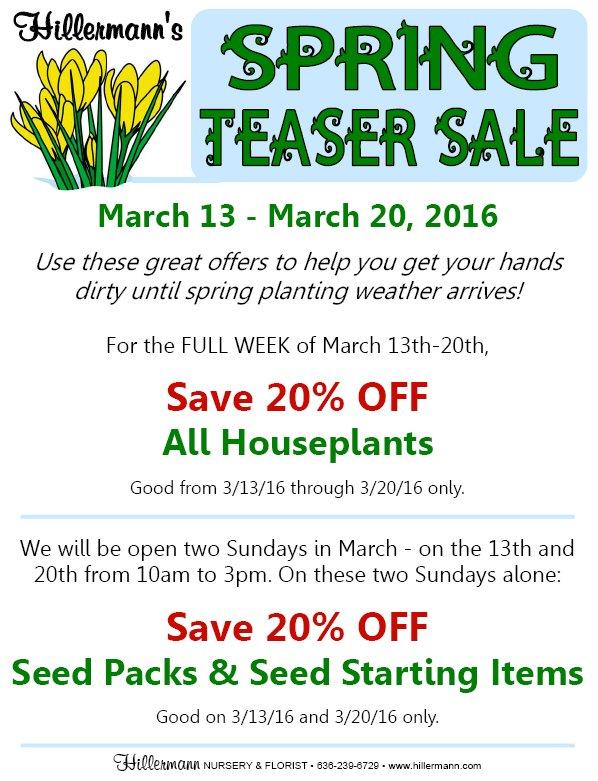 Spring Teaser Sale graphic art
