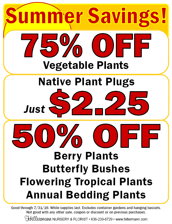 Summer Savings sale flyer - prices good through 7-31-16 at Hillermann Nursery and Florist