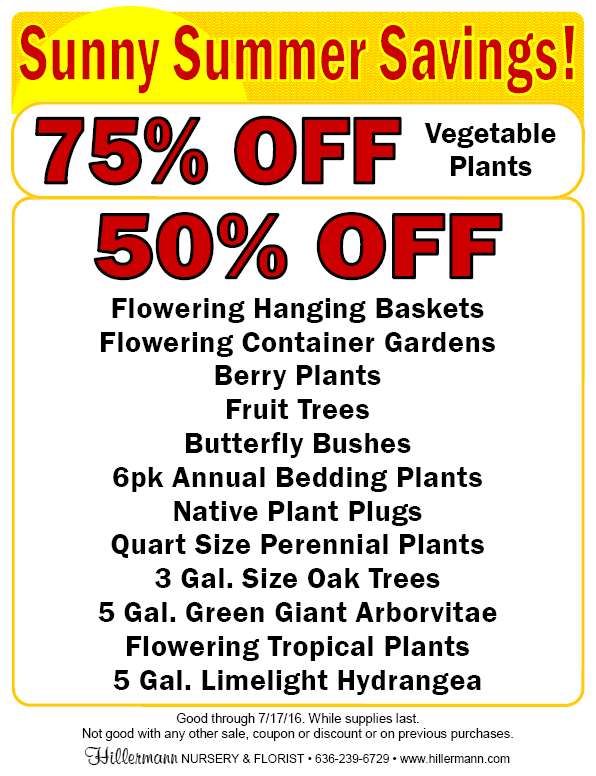 Sunny Summer Savings now through 7-17-16!! Come by to check out all sale items at Hillermann Nursery and Florist!!