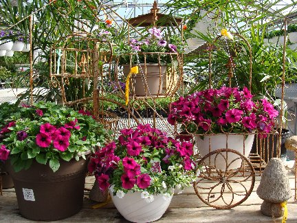 Display in the greenhouse at Hillermann Nursery and Florist