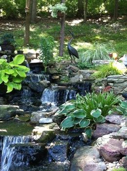 Water Garden Pond - St. Louis Water Gardening Society - Pond-O-Rama tour