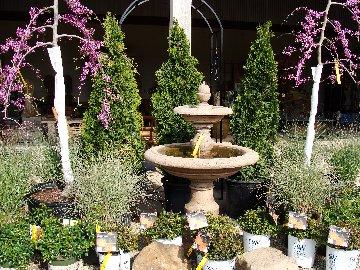 Shrubs, trees and a fountain available at Hillermann Nursery & Florist