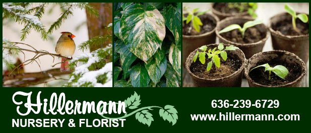 Bird and plant pictures and store information for Hillermann Nursery and Florist