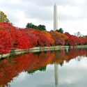 Washington DC Fall
