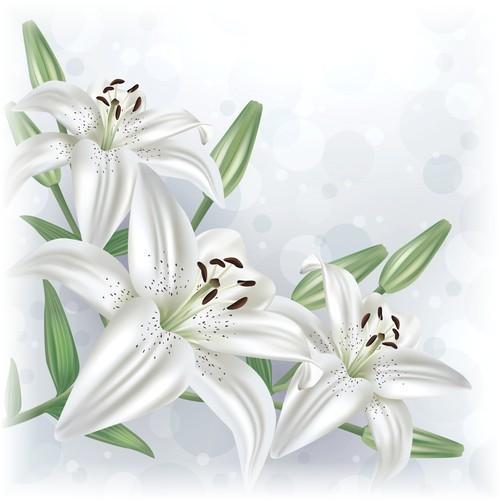 I Offer Lilies of Forgiveness