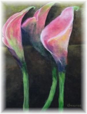 Calla Lily by Lynda Siciliano