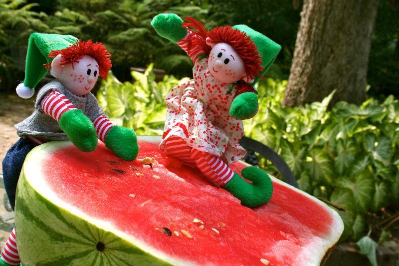 Elves eating watermelon.