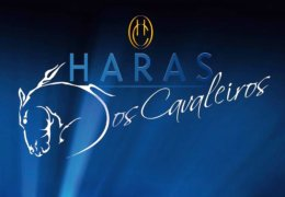 Haras logo blue background