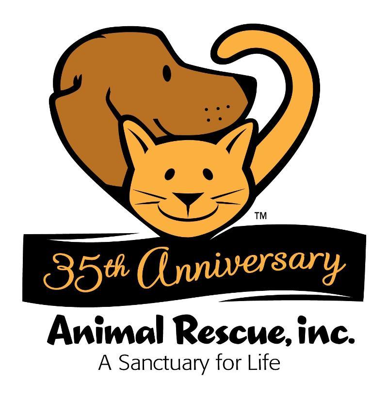 35 year logo