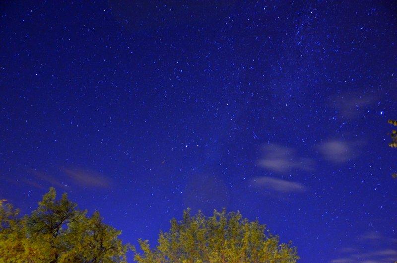 Starlit night