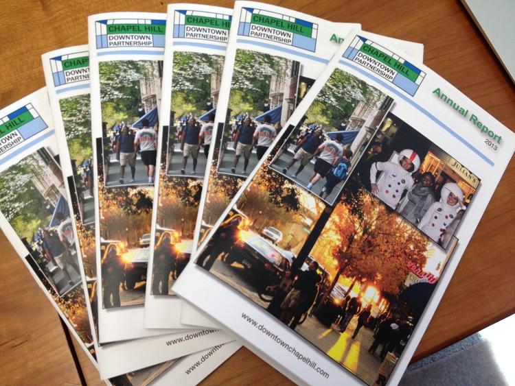Annual Report CHDP 2013