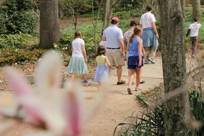 Family walking Coker Arboretum in the Spring