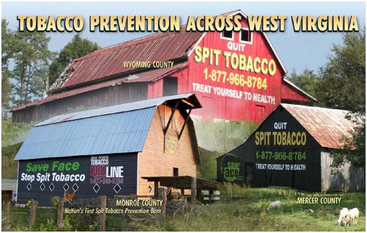WV tobacco prevention