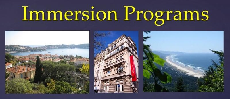 Immersion Program Overview 2013