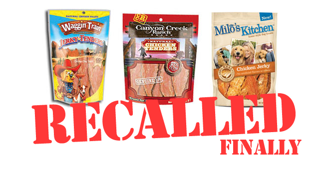 Recall On Dog Treats June