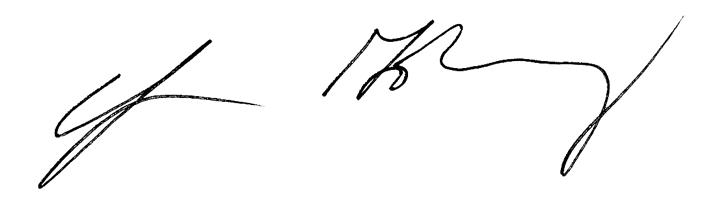 Rabbi Goldbergs Signature