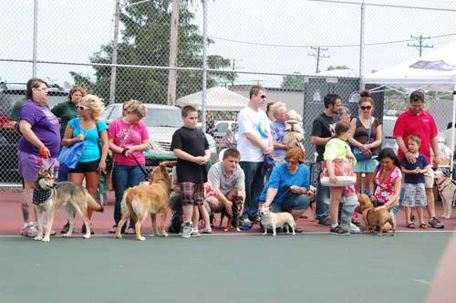 Dog Walk-2013 Adoptathon
