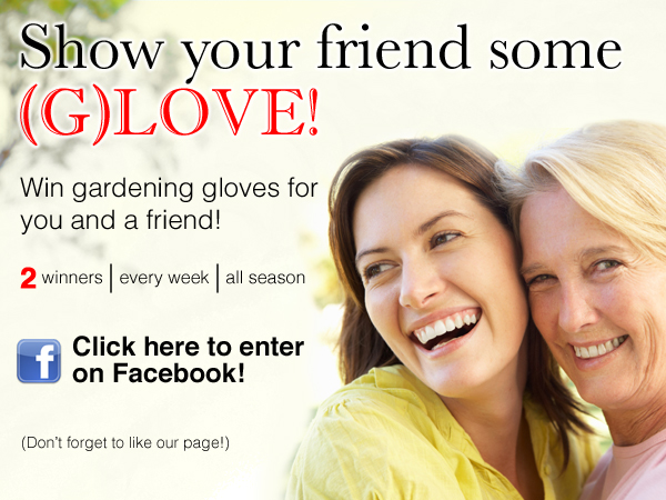 Greenery Glove Contest