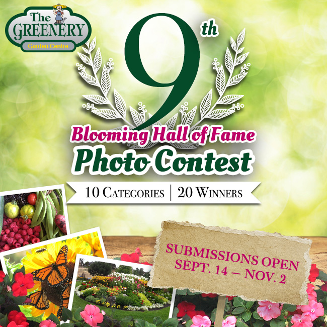 9th Blooming Hall of Fame 2015