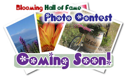 Blooming Hall of Fame Photo Contest