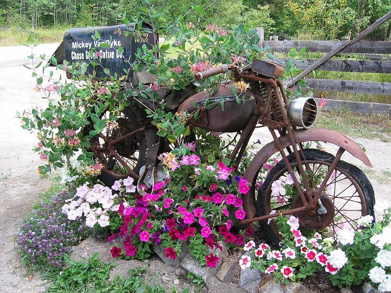 Best Planter - Public Vote - Dave McLelland