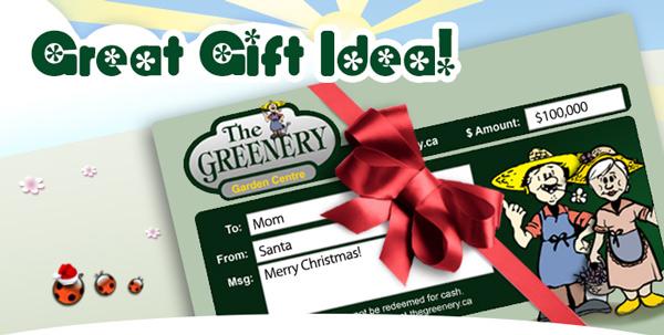 Greenery Gift Idea Idea