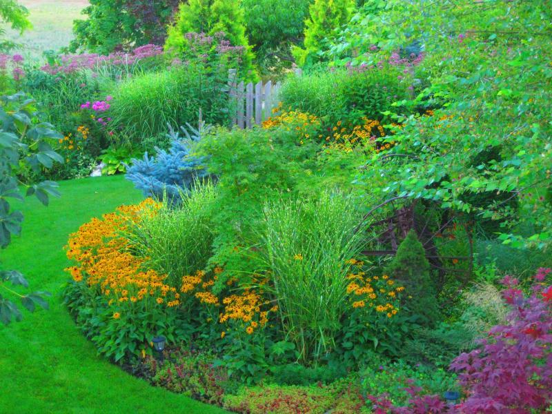 Best Perennial Flower Bed - Staff Vote - Donna Kelbert