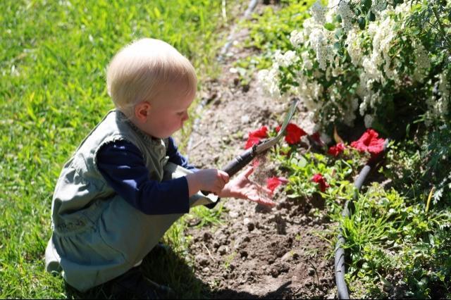 Best Kids Garden - Staff Vote - Colleen