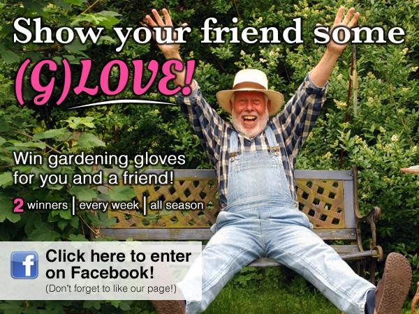 Greenery Glove Contest