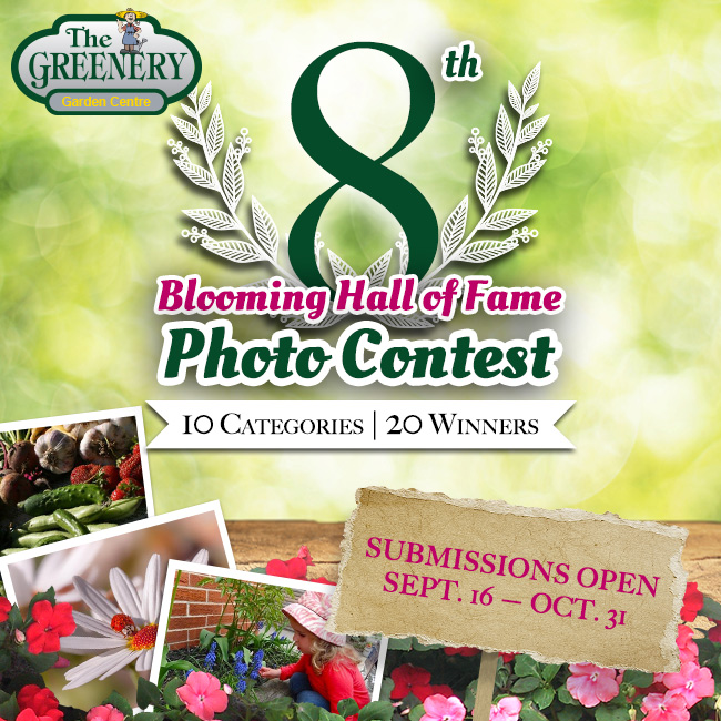Blooming Hall of Fame Photo Contest 2014