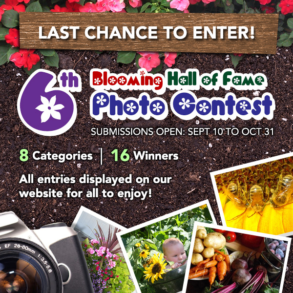 6th Annual Blooming Hall of Fame Photo Contest - Last Chance to Enter