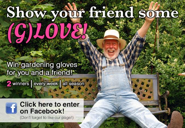 Greenery Glove Giveaway