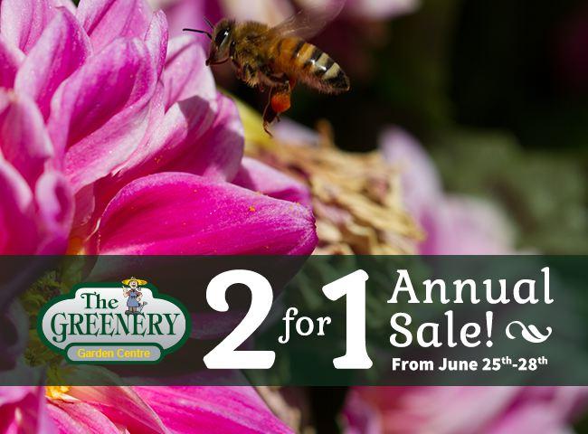 Greenery Annual Sale